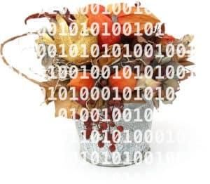 Quellcode auf PowerPoint-Folien ist wie Trockenblumen - tot